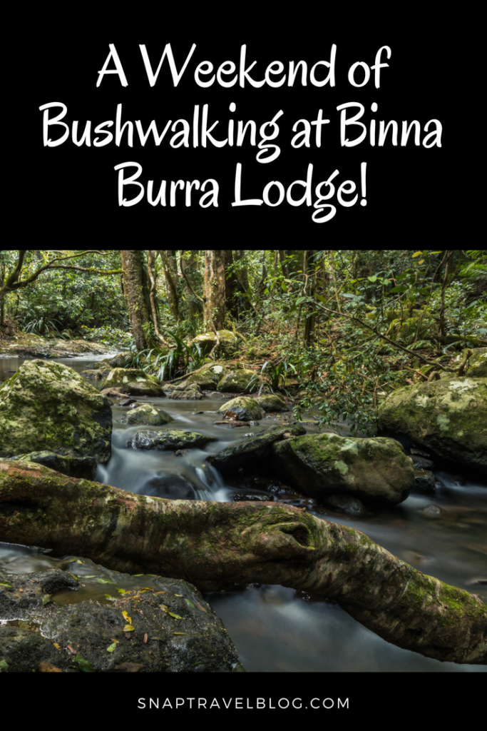 A weekend of bushwalking at Binna Burra Lodge. Hiking Trails at Binna Burra Lodge. Lamington National Park Queensland.