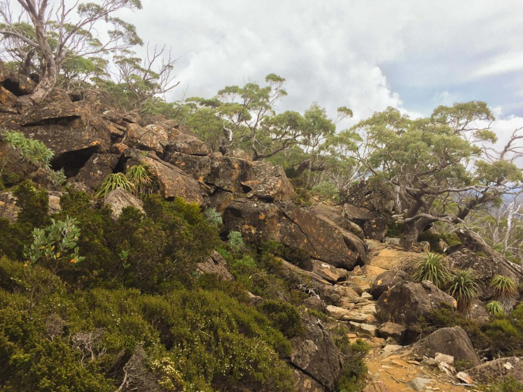 The Snow Gums Track is wild and rocky.