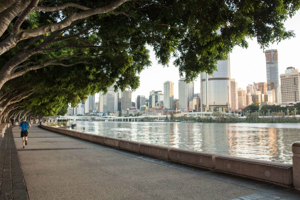Walk along the Clem Jones Promenade at Brisbane's South Bank under the shade of the magnificent fig trees and take in the scenic city and river views.
